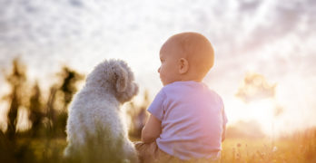 baby and dog sitting next to each other | 6 Important Ways of Preparing Pets For a Baby's Arrival